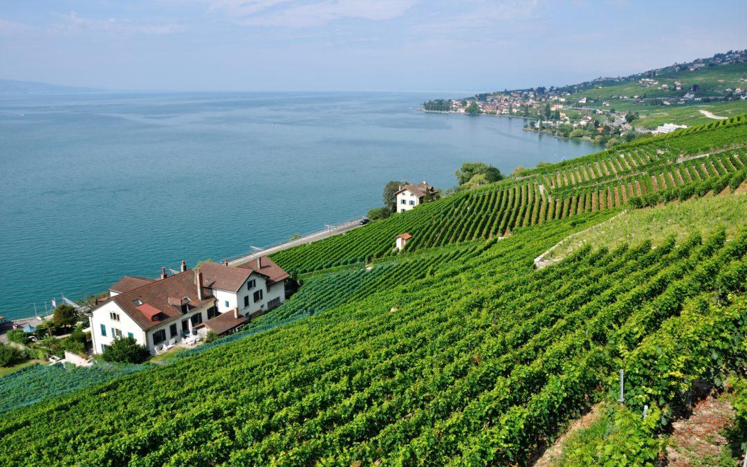 Urbaniste chef-fe de projet à l'État de Vaud (80-100%)